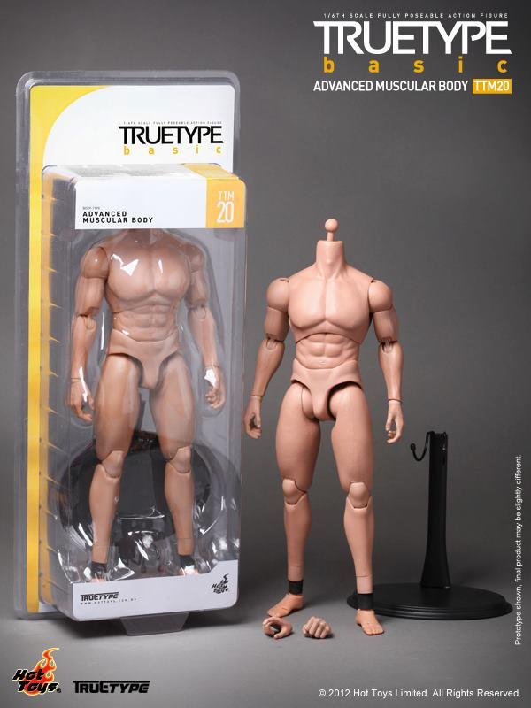 True Type Basic - Advanced Muscular Body TTM20